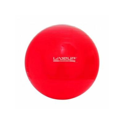 Bola de ginástica Suíça Premium - 45cm - Liveup Sports