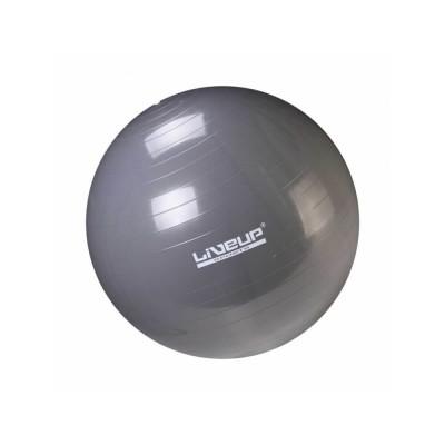 Bola de ginástica Suíça Premium - 65cm - Liveup Sports
